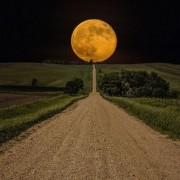 Harvest Moonlight  Yoga October  27th 7pm